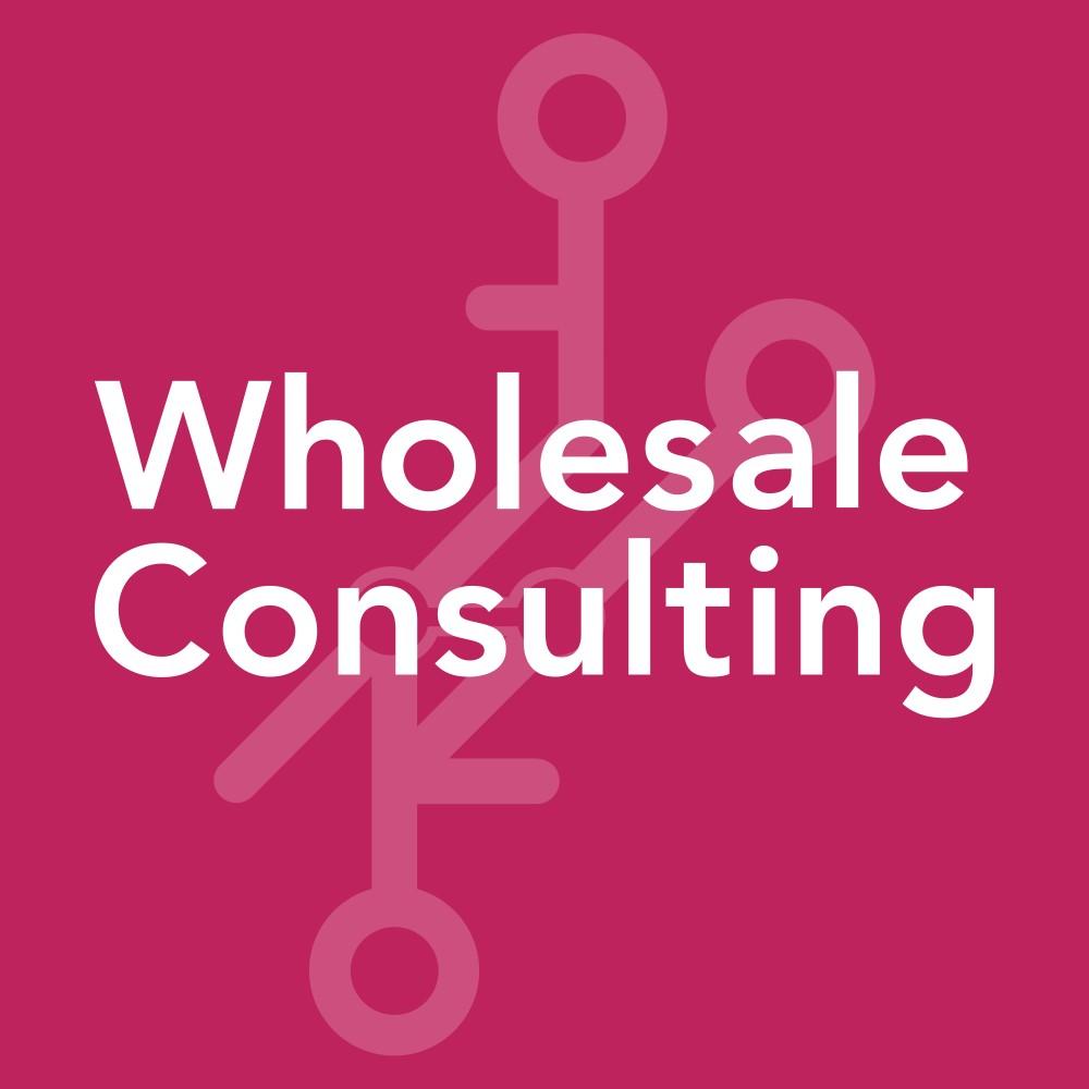 Unit4 Wholesale B.V. | Consultancy